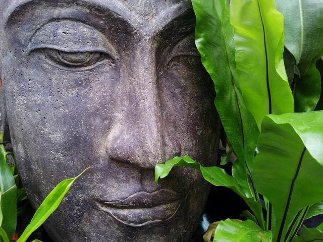 The 3 Fundamental Skills of Mindfulness Meditation